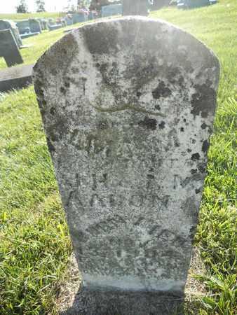 AARON, ALMA M - Adair County, Kentucky   ALMA M AARON - Kentucky Gravestone Photos