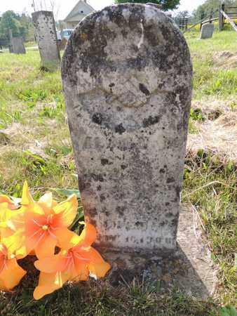 AARON, ALMON D - Adair County, Kentucky | ALMON D AARON - Kentucky Gravestone Photos