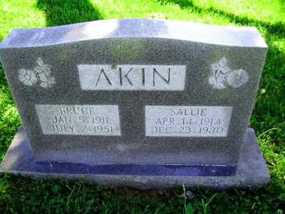 STUBBS AKIN, SALLIE KATE - Adair County, Kentucky | SALLIE KATE STUBBS AKIN - Kentucky Gravestone Photos