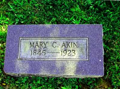 AKIN, MARY C - Adair County, Kentucky | MARY C AKIN - Kentucky Gravestone Photos
