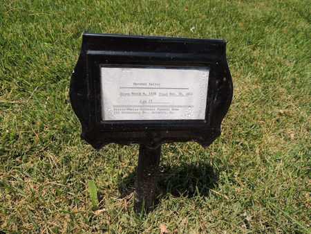 BAILEY, HERSCHEL - Adair County, Kentucky   HERSCHEL BAILEY - Kentucky Gravestone Photos