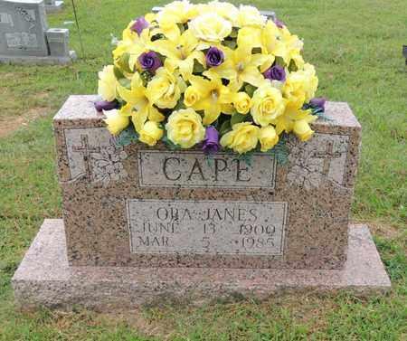 CAPE, ORA - Adair County, Kentucky | ORA CAPE - Kentucky Gravestone Photos