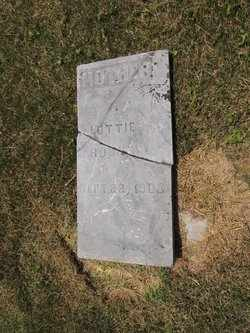 ROOKS, LOTTIE - Adair County, Kentucky   LOTTIE ROOKS - Kentucky Gravestone Photos