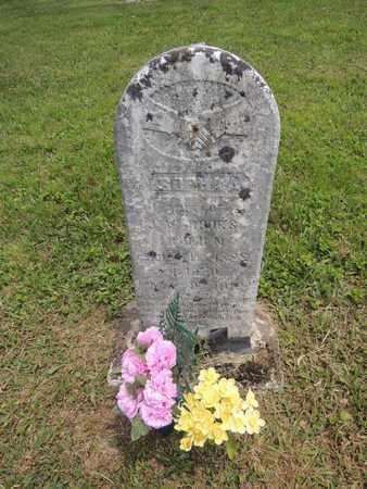 ROOKS, SOPHIA A - Adair County, Kentucky | SOPHIA A ROOKS - Kentucky Gravestone Photos