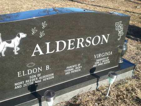 ALDERSON, VIRGINIA - Allen County, Kentucky | VIRGINIA ALDERSON - Kentucky Gravestone Photos