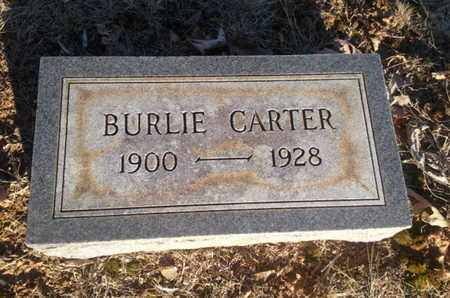 CARTER, BURLIE - Allen County, Kentucky | BURLIE CARTER - Kentucky Gravestone Photos
