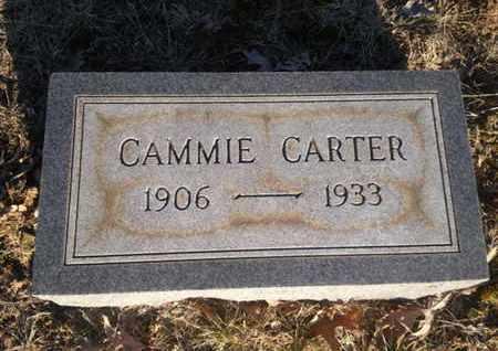 CARTER, CAMMIE - Allen County, Kentucky   CAMMIE CARTER - Kentucky Gravestone Photos