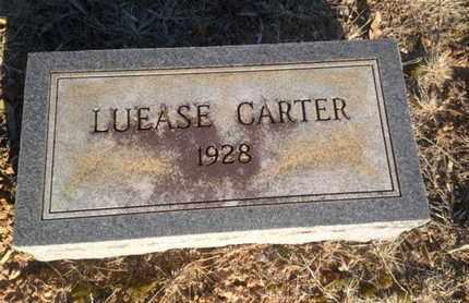 CARTER, LUEASE - Allen County, Kentucky   LUEASE CARTER - Kentucky Gravestone Photos