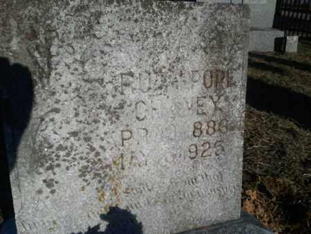 POPE CHANEY, RUTH - Allen County, Kentucky | RUTH POPE CHANEY - Kentucky Gravestone Photos