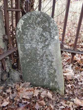 MCELROY HUNT, MARY C. - Allen County, Kentucky | MARY C. MCELROY HUNT - Kentucky Gravestone Photos