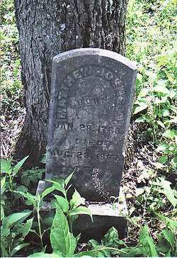 JOHNSON, MATTHEW - Allen County, Kentucky | MATTHEW JOHNSON - Kentucky Gravestone Photos