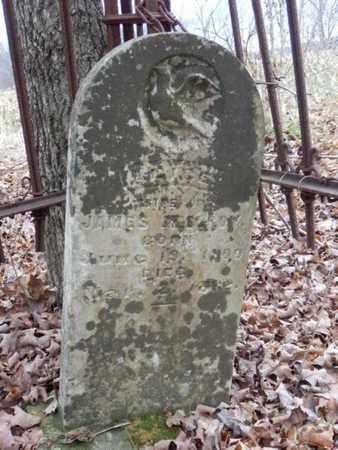 MCELROY, ALICE - Allen County, Kentucky | ALICE MCELROY - Kentucky Gravestone Photos
