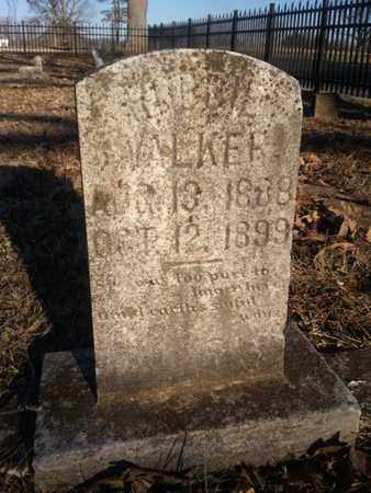 WALKER, ROBBIE - Allen County, Kentucky | ROBBIE WALKER - Kentucky Gravestone Photos