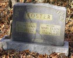SLAUGHTER FOSTER, MARY ELLLEN - Barren County, Kentucky | MARY ELLLEN SLAUGHTER FOSTER - Kentucky Gravestone Photos