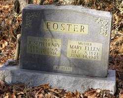 FOSTER, MARY ELLLEN - Barren County, Kentucky | MARY ELLLEN FOSTER - Kentucky Gravestone Photos