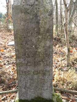 BYBEE PACE, JEMIMA E - Barren County, Kentucky | JEMIMA E BYBEE PACE - Kentucky Gravestone Photos