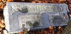 WILSON, JOSHUA THOMAS - Barren County, Kentucky   JOSHUA THOMAS WILSON - Kentucky Gravestone Photos