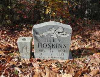 HOSKINS, JULIUS - Bell County, Kentucky | JULIUS HOSKINS - Kentucky Gravestone Photos