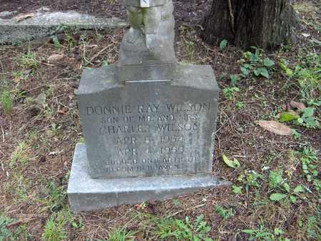 WILSON, DONNIE RAY - Bell County, Kentucky | DONNIE RAY WILSON - Kentucky Gravestone Photos