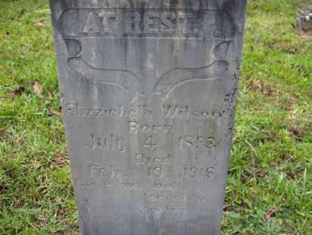WILSON, ELIZABETH - Bell County, Kentucky   ELIZABETH WILSON - Kentucky Gravestone Photos
