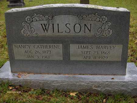 WILSON, NANCY CATHERINE - Bell County, Kentucky | NANCY CATHERINE WILSON - Kentucky Gravestone Photos