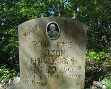 WILSON, ROSA JANE - Bell County, Kentucky | ROSA JANE WILSON - Kentucky Gravestone Photos
