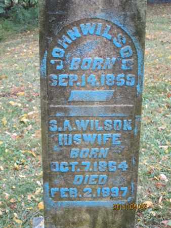 WILSON, SUOLIE A. - Bracken County, Kentucky | SUOLIE A. WILSON - Kentucky Gravestone Photos