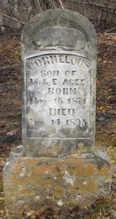 AGEE, CORNELOUS - Clinton County, Kentucky | CORNELOUS AGEE - Kentucky Gravestone Photos