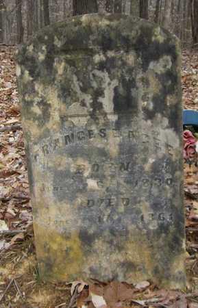STRONG AGEE, FRANCES E - Clinton County, Kentucky | FRANCES E STRONG AGEE - Kentucky Gravestone Photos