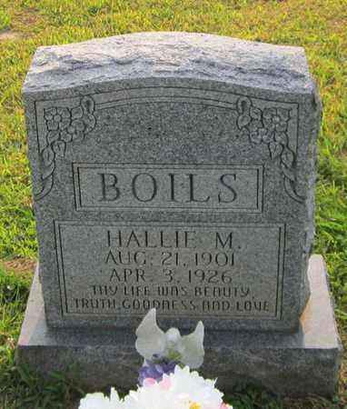 BOILS, HALLIE M - Clinton County, Kentucky   HALLIE M BOILS - Kentucky Gravestone Photos