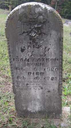 CATRON, MARY H - Clinton County, Kentucky   MARY H CATRON - Kentucky Gravestone Photos