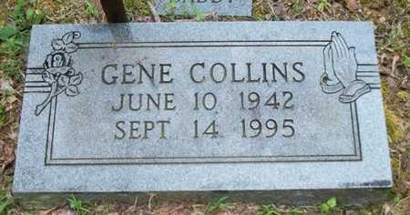 COLLINS, DORIS GENE - Clinton County, Kentucky | DORIS GENE COLLINS - Kentucky Gravestone Photos