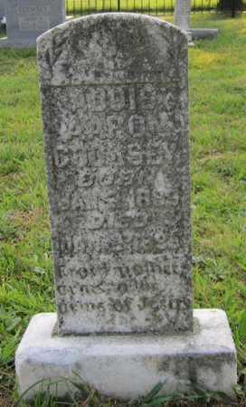 COOKSEY, ADDIS AARON - Clinton County, Kentucky | ADDIS AARON COOKSEY - Kentucky Gravestone Photos