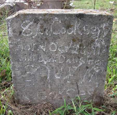 COOKSEY, S M - Clinton County, Kentucky | S M COOKSEY - Kentucky Gravestone Photos