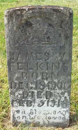 FELKINS, JAMES W - Clinton County, Kentucky | JAMES W FELKINS - Kentucky Gravestone Photos