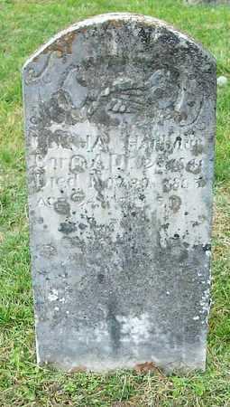 HARBER, ELISHA - Clinton County, Kentucky | ELISHA HARBER - Kentucky Gravestone Photos