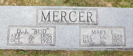 MERCER, MARY E - Clinton County, Kentucky | MARY E MERCER - Kentucky Gravestone Photos