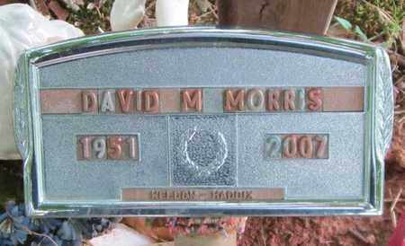 MORRIS, DAVID M - Clinton County, Kentucky | DAVID M MORRIS - Kentucky Gravestone Photos