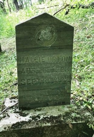 ORTON, HALLIE - Clinton County, Kentucky | HALLIE ORTON - Kentucky Gravestone Photos