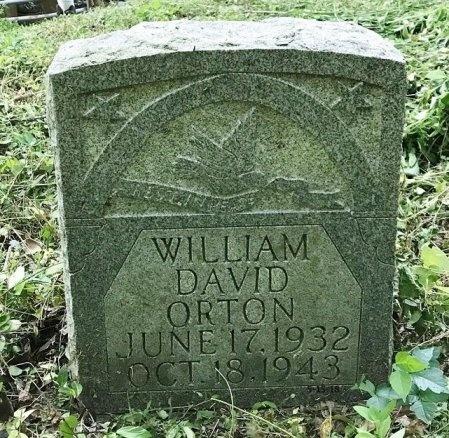 ORTON, WILLIAM DAVID - Clinton County, Kentucky | WILLIAM DAVID ORTON - Kentucky Gravestone Photos