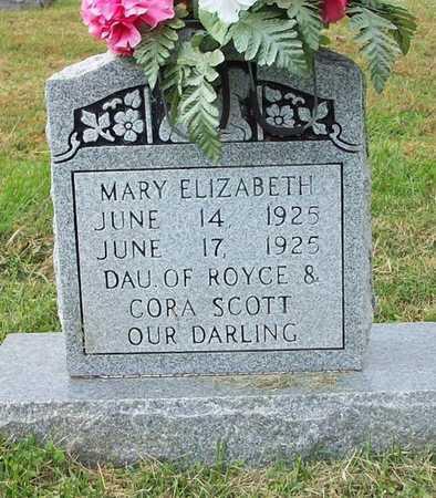 SCOTT, MARY ELIZABETH - Clinton County, Kentucky | MARY ELIZABETH SCOTT - Kentucky Gravestone Photos