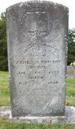 VINCENT, CATHERINE - Clinton County, Kentucky | CATHERINE VINCENT - Kentucky Gravestone Photos