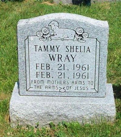 WRAY, TAMMY SHELIA - Clinton County, Kentucky | TAMMY SHELIA WRAY - Kentucky Gravestone Photos