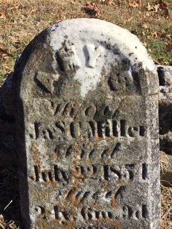 MILLER, AMY C. - Daviess County, Kentucky | AMY C. MILLER - Kentucky Gravestone Photos