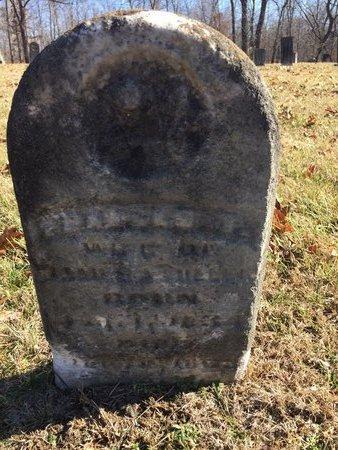 MILLER, FRANCES T. - Daviess County, Kentucky | FRANCES T. MILLER - Kentucky Gravestone Photos
