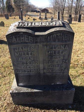 MILLER, MELVINA - Daviess County, Kentucky   MELVINA MILLER - Kentucky Gravestone Photos