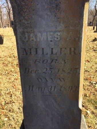 MILLER, JAMES A. - Daviess County, Kentucky | JAMES A. MILLER - Kentucky Gravestone Photos