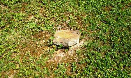 ?, ? - Elliott County, Kentucky   ? ? - Kentucky Gravestone Photos