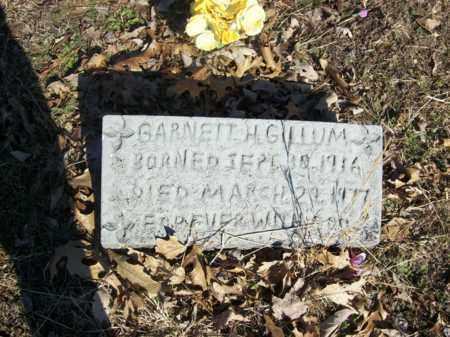 GILLUM, GARNETT H - Elliott County, Kentucky | GARNETT H GILLUM - Kentucky Gravestone Photos