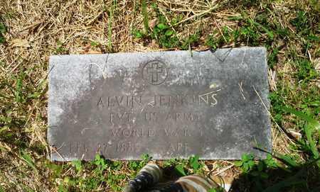 JENKINS (VETERAN WWI), ALVIN - Elliott County, Kentucky   ALVIN JENKINS (VETERAN WWI) - Kentucky Gravestone Photos